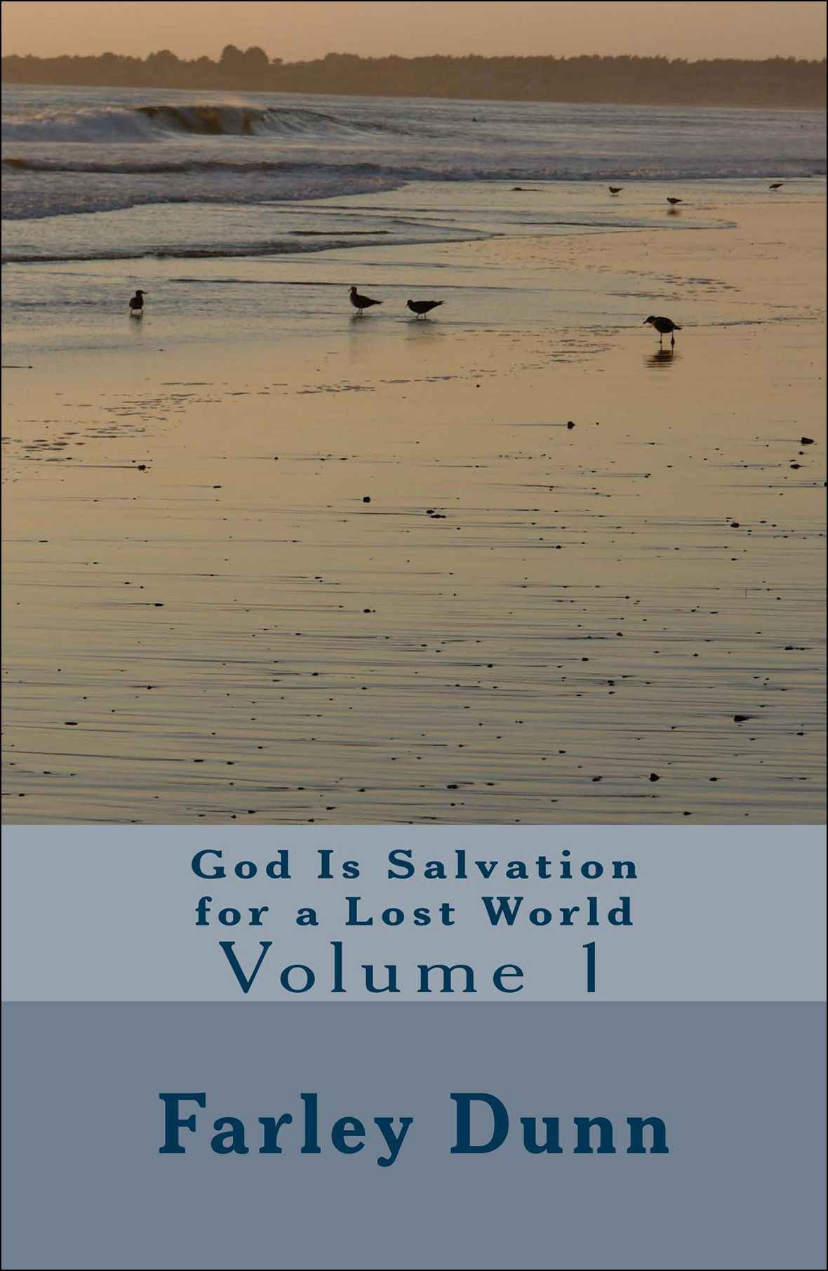 God Is Salvation for Cover for web insertion Vol 1