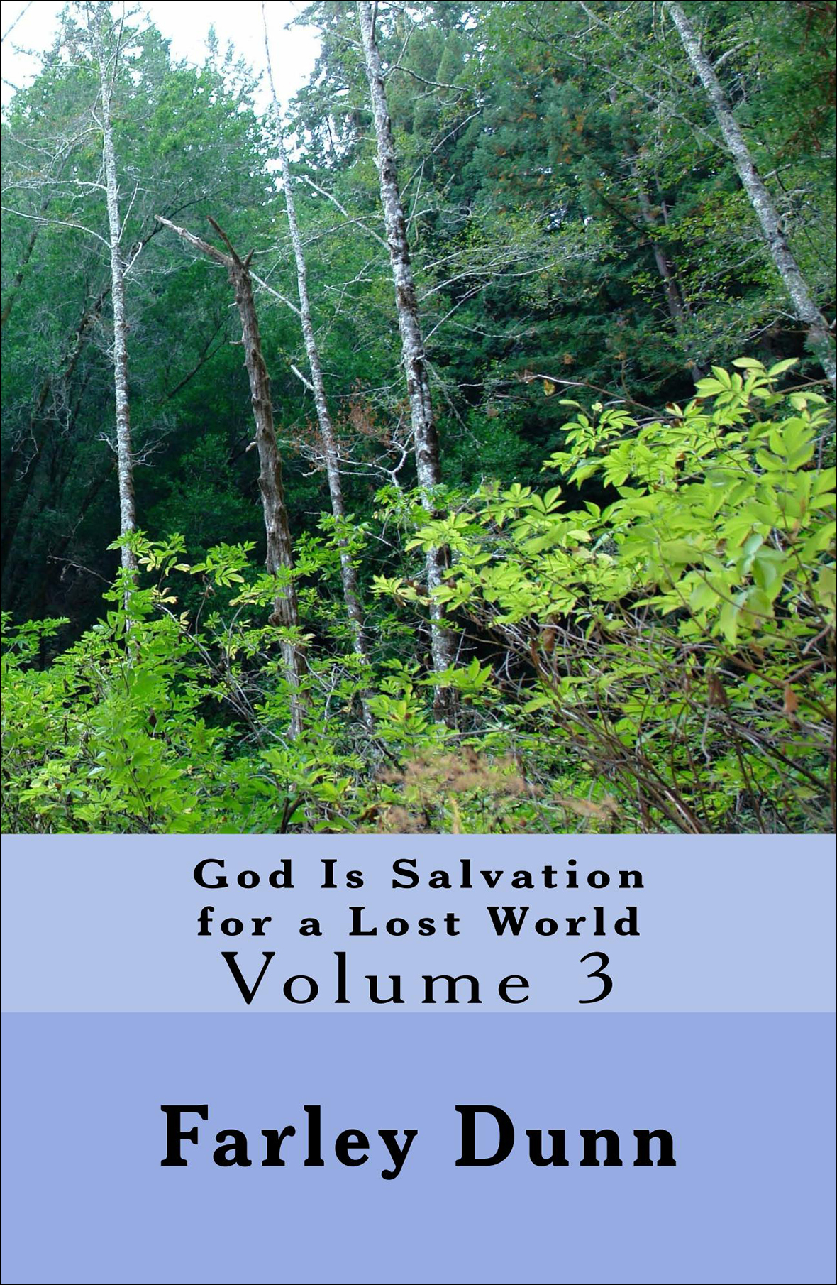 God Is Salvation for Cover for web insertion Vol 3