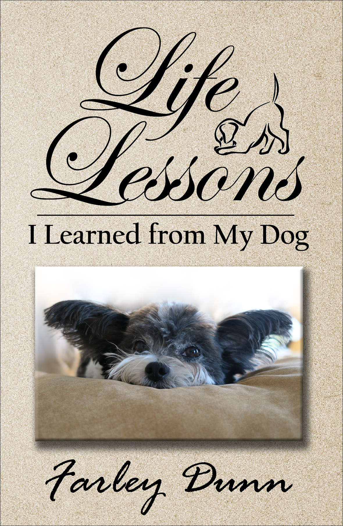 Life Lessons cover front reduced for web insertion