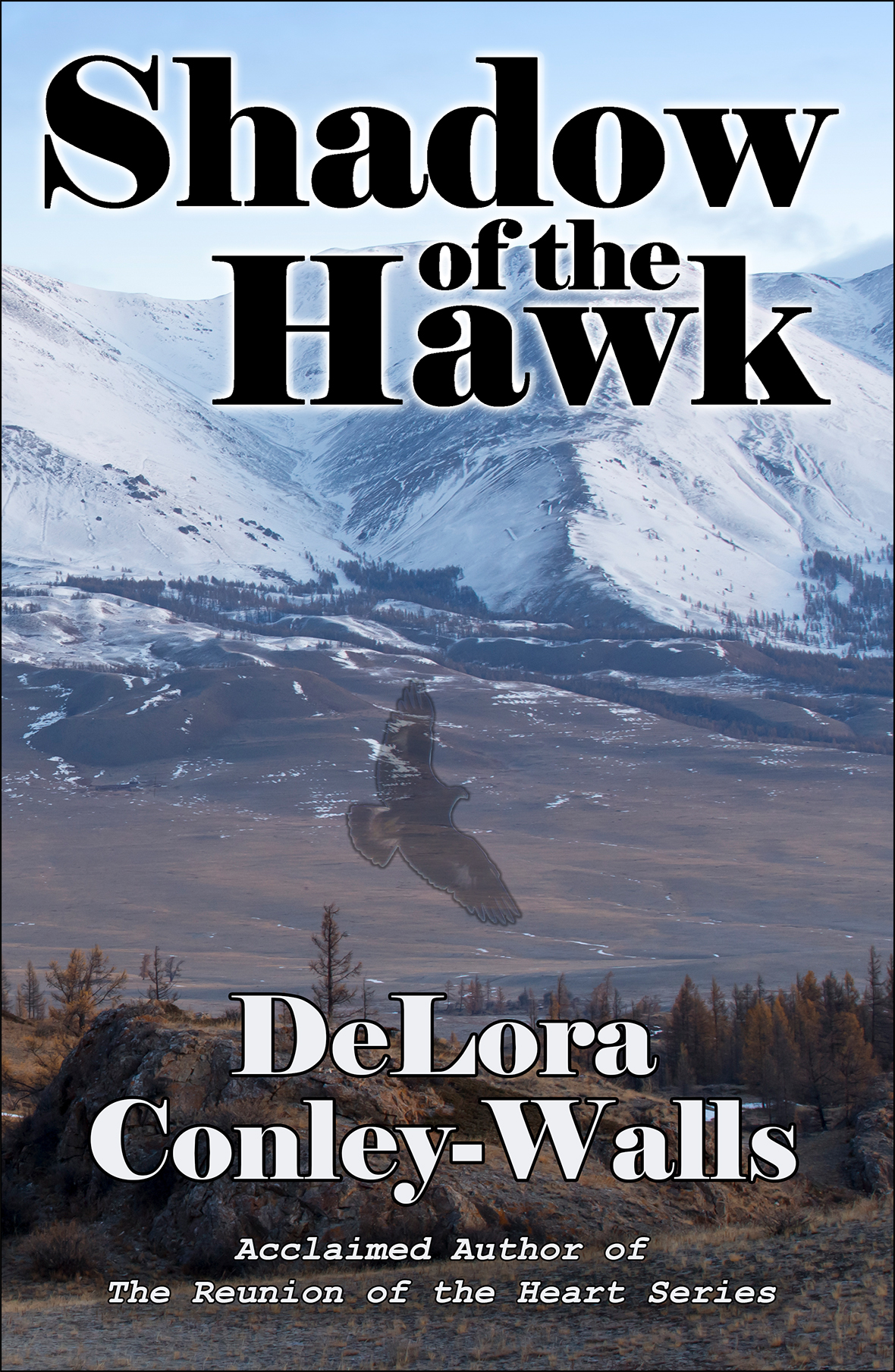 Shadow of the Hawk Cover front v11 reduced for web insertion